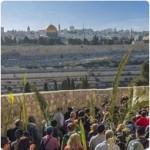 jerusalem-reisen